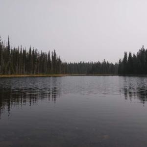 熊出現?! 誰も居ない湖へ
