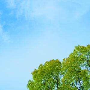 エネルギーや気、波動についてのまとめ記事