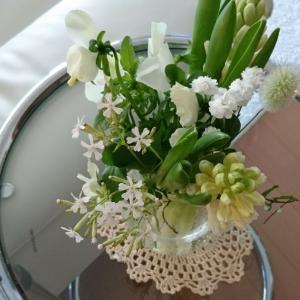 お花の定期便再び