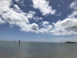 ハワイで不妊治療14