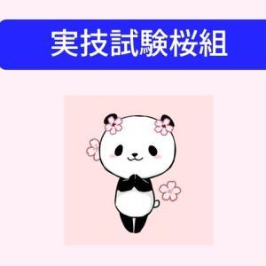 明日から桜咲く🌸