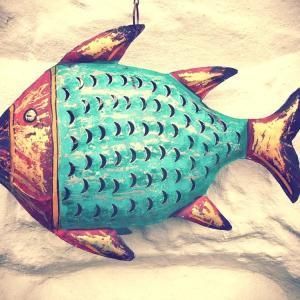 やっちゃいました、レトロなお魚さんゲット!
