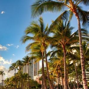 ハワイ、本日は27件に急増