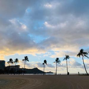 ハワイ検査報告遅れのため増えていますが