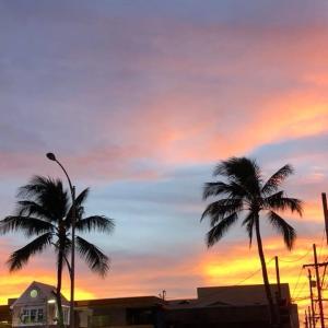 ハワイでは、18件の新型コロナ症例の急増に