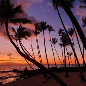 ハワイ感染者急増のためNYの隔離リストへ登録に