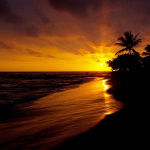 ハワイ州のイゲ知事が署名し正式に承認されました