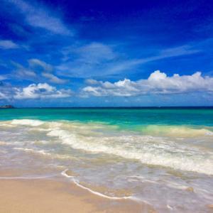 ハワイの渡航前検査プログラムが間もなく登録可能になります