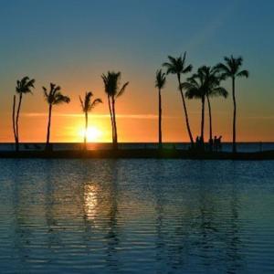 渡航前検査プログラムは、ハワイでは実施しません!