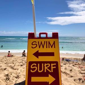 日本の旅行者が年末までにハワイに来ることを望んでいます by イゲ知事