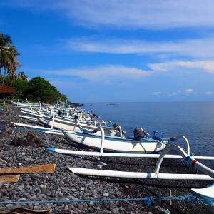 バリ島ダイビング&シュノーケリングポイント、徐々にオープン!