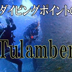 バリ島ダイビングポイントの王道「トランベン」