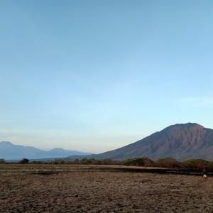 ジャワ島バニュワンギの調査ダイブ Day1