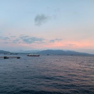 ジャワ島バニュワンギの調査ダイブ Day3