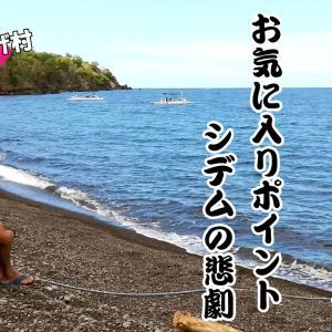 お気に入りポイントSIDEMの悲劇。バリ島ダイビングマクロシーズン本番!