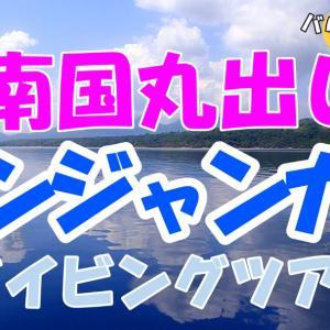 """南国丸出しの海!バリ島の国立公園""""ムンジャンガン""""を潜る!"""