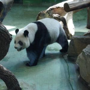 台北動物園は予想以上に広い