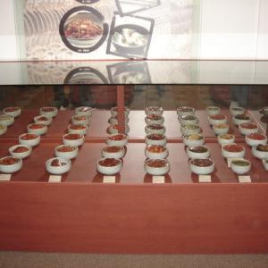 韓国3日目 最終日はキムチ博物館からのサムギョプサル