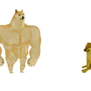 【ミーム解説】Swole Doge vs Cheemsとは