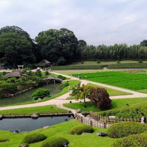 京都を横目に岡山へ