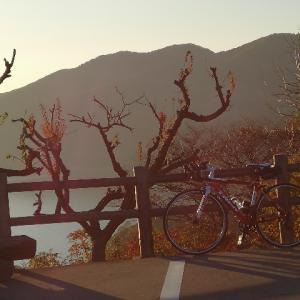 世界の梅公園ヒルクライム 〜オフシーズンこそ醍醐味かも!〜