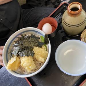 超大盛蕎麦の長寿庵 五稜郭の桜
