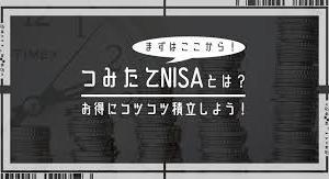 【積立NISA運用報告】8ヶ月目 +21,321円 知らぬ間に2万増えてました