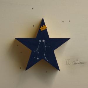 11月30日双子座満月