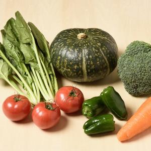 【易しく解説】緑黄色野菜ってどんな効果があるの?