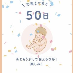 【妊婦/経産婦】あと出産まで50日!毎日何をしているか‥
