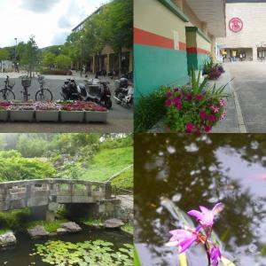 ラクセーヌ、洛西NT、竹林公園花巡り