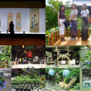 京都美術館、大蓮寺、革堂、下御霊神社蓮巡り