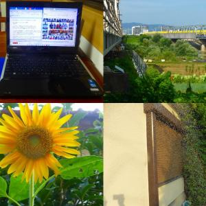 避暑生活 PC、ドクターイエロー、庭花