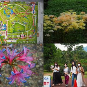 彼岸花、萩、藤袴 京都植物園一周撮り巡り