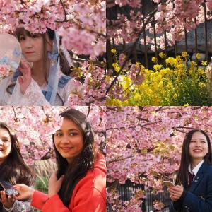 淀の河津桜、美人満開 便乗望遠撮影会