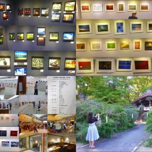 AMS写真館、文化芸術会館 梨木神社 萩巡り