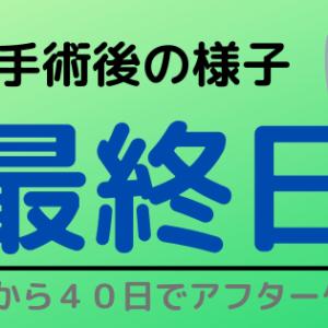 包茎手術後の様子(40日目)~全てのアフターケア完了!~