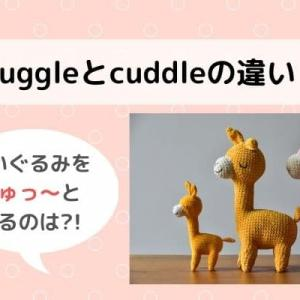 snuggleとcuddleの違いを説明。スラングを使いこなしてネイティブ英語に!