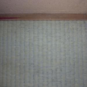 畳にカビが生えた時の対処法??