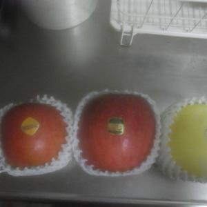 りんごの種類いろいろ