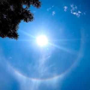 今日の太陽の暈(かさ)は