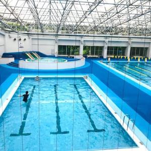 水泳の日。