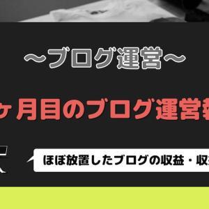 【ブログ運営】11ヶ月目の運営報告 ~放置したブログの収益・pv数は?~