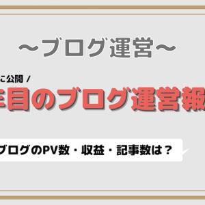 ブログを初めて1年目の運営報告 〜PV数・収益・記事数は?〜