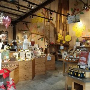 【はちみつジンジャーシロップ】神戸養蜂場に行ったよ!温活や健康志向の家族連れにおすすめ