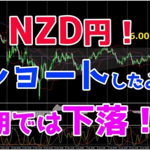 ニュージーランド円!ショートしたよ♪中期では下落?