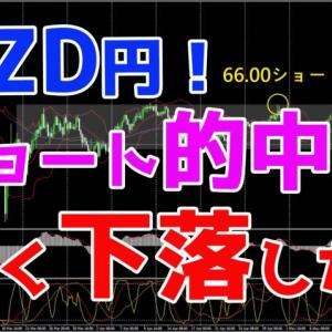 NZD円!ショート的中♪大きく下落したね♪