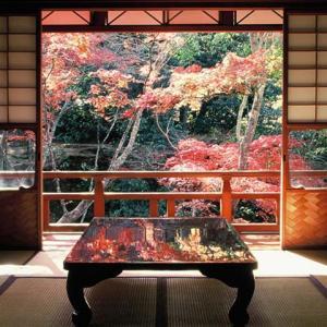 日本企業の素晴らしさ。200年以上続く老舗企業数が世界一!長く成功する秘訣とは?