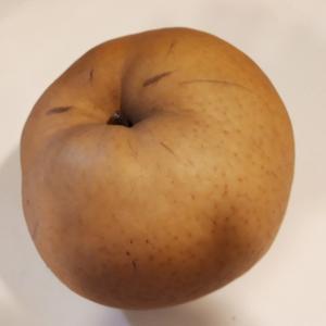 12月に梨を食べた。2か月後の梨「あたご」