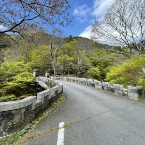 京都愛宕山の表参道ルートを参拝登山!駐車場やオススメルートも紹介【写真付き】